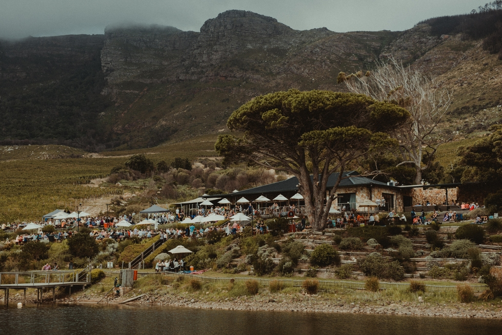 the Cape Point Vineyards winery nestled under the big African tree in the bottom of the Noordhoek hills with a lake in front