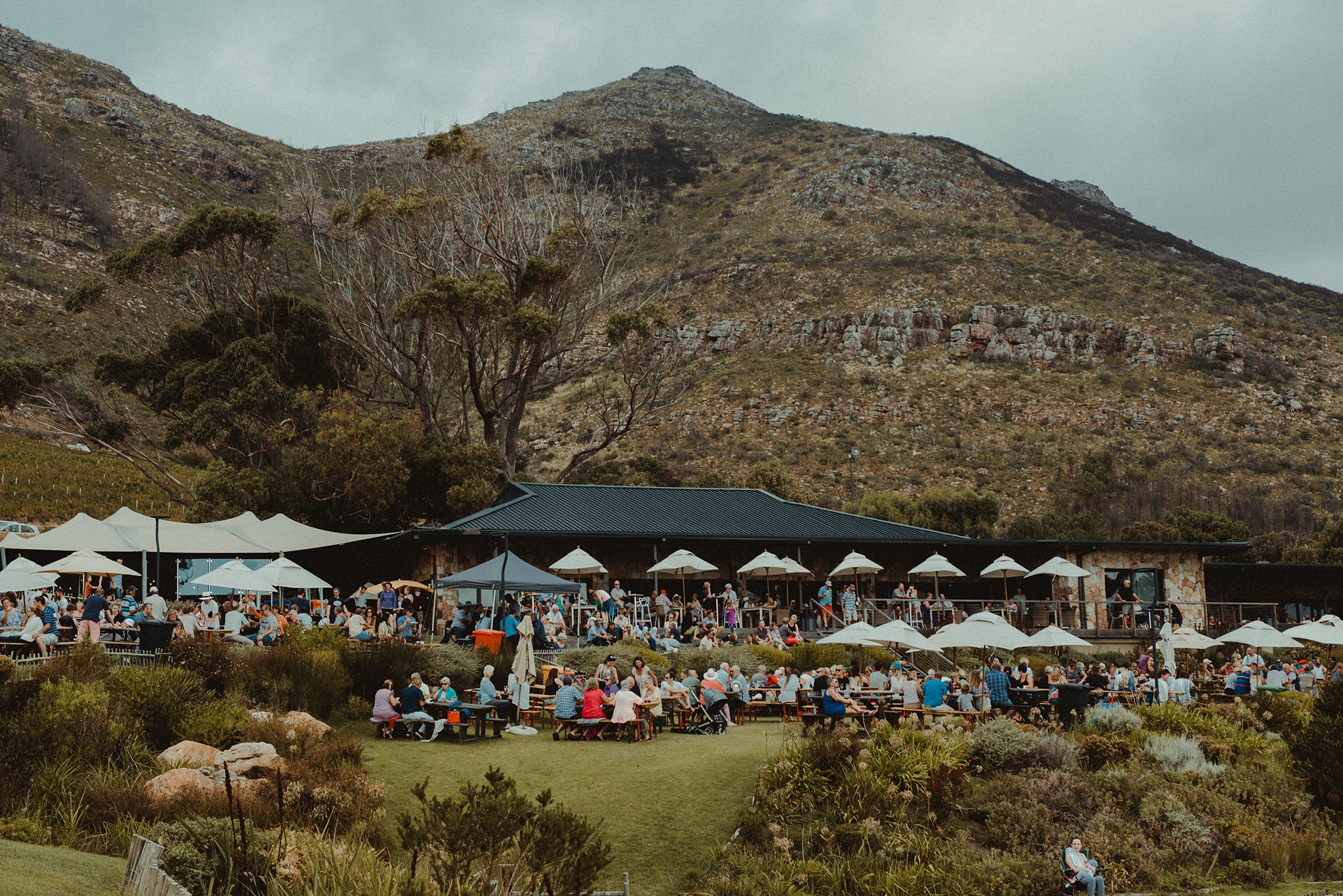 Cape-Point-Vineyards -Thursday-Market-by-Polina-Ilieva-Photography-Tripsesh-Travel-blog